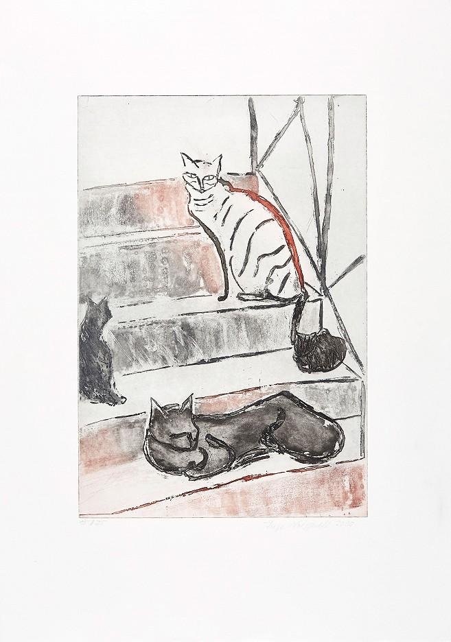 Katzen im Freien