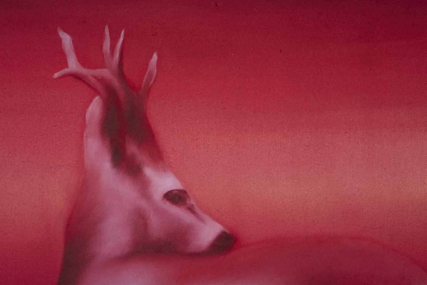Red dear