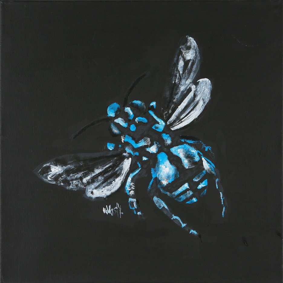 Schildbiene