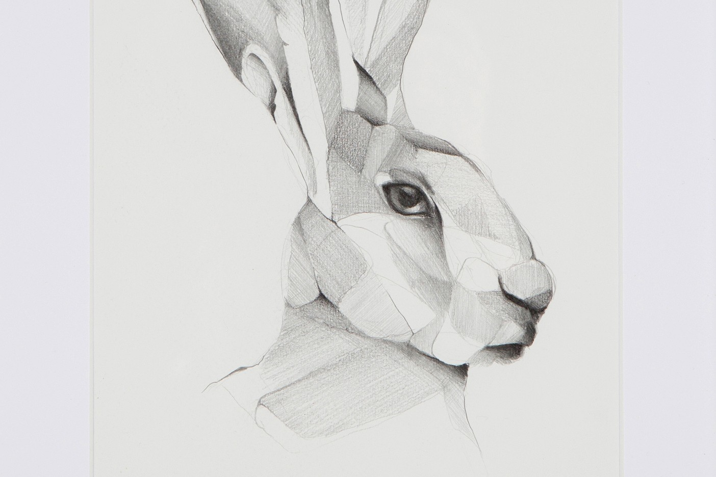 untitled (hare)