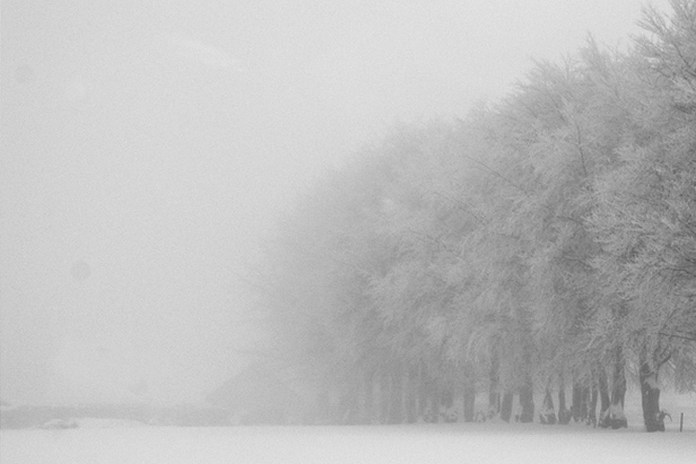 Winterimpression