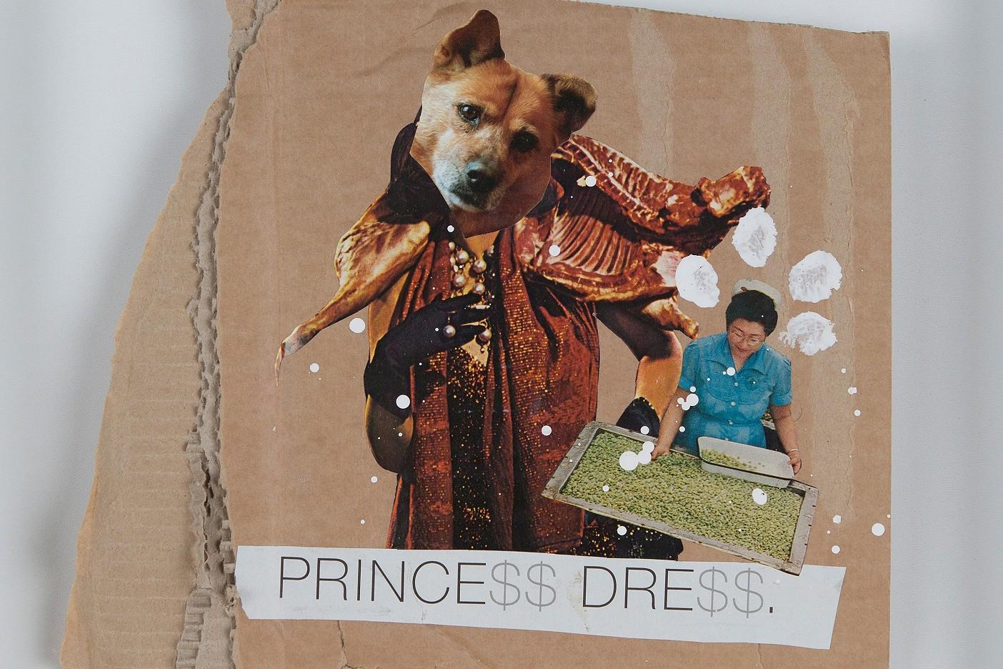 Princess D. goes shopping