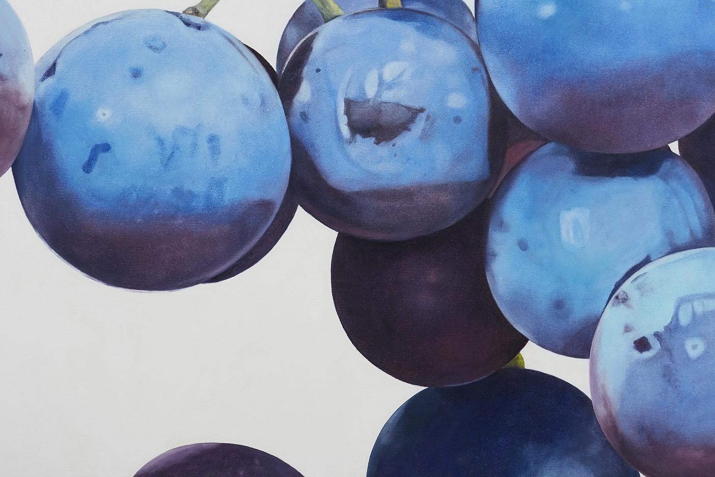 vitis vinifera V