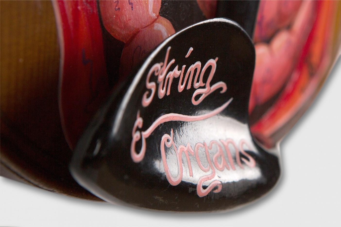 string & organs